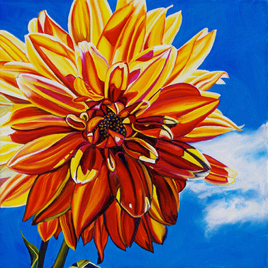 DAHLIA (from my garden) • 12 inch x 12 inch oil painting • 2011 Marie Scott