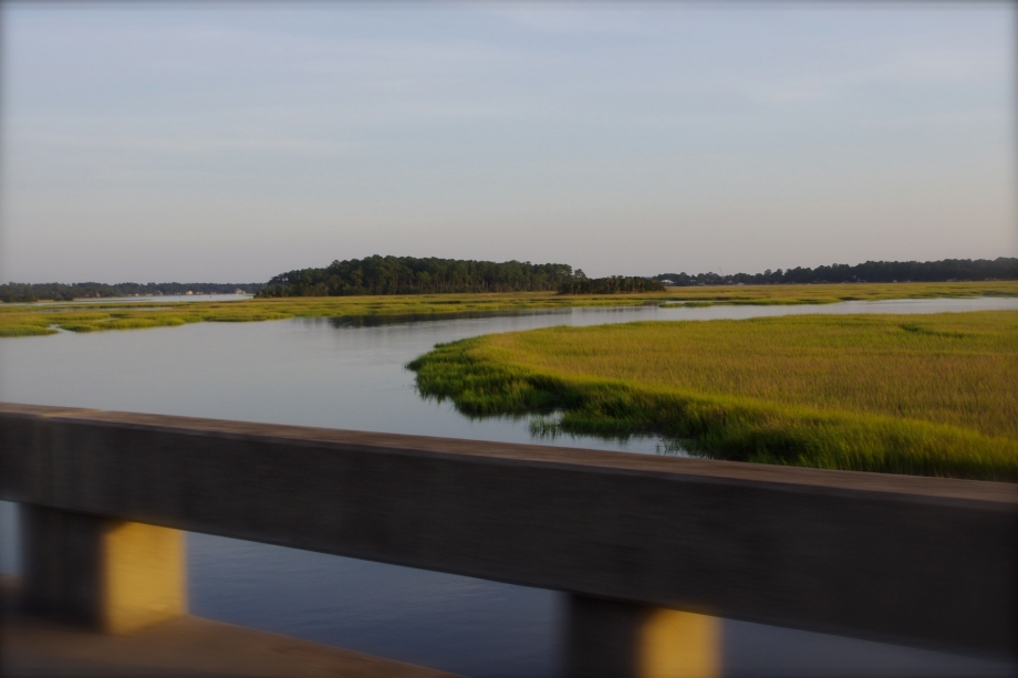 This view from the journey made for a wonderful marsh memory.